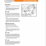 Still Engine VW 2.0i Turbo Diesel (CBHA, CBJB) Workshop Repair Manual